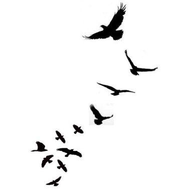 birdsilhouettes